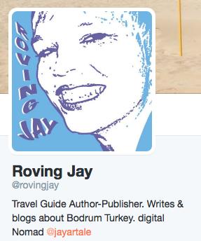 Roving Jay Twitter Profile @rovingjay