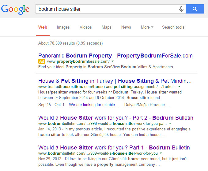 Bodrum Bulletin House Sitting Article Google Ranking for Roving Jay