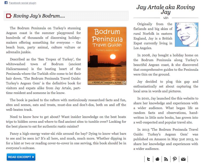 Jay Artale Book Pulse Entry mini site