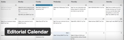 Top 5 Essential Plugins Editorial Calendar WordPress Plugin Image